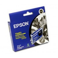 Epson T0491 Ink Cartridge - Black